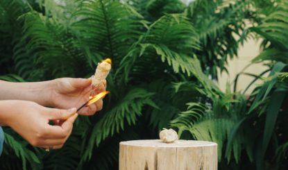 Разжигатель из древесной шерсти производство в Украине
