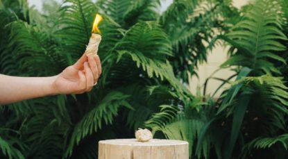 Разжигатель из древесной шерсти Веселые Бобры