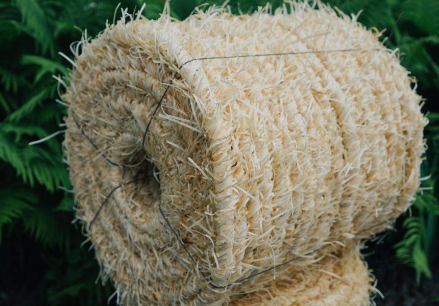 Веревка с древесной шерсти Веселые Бобры