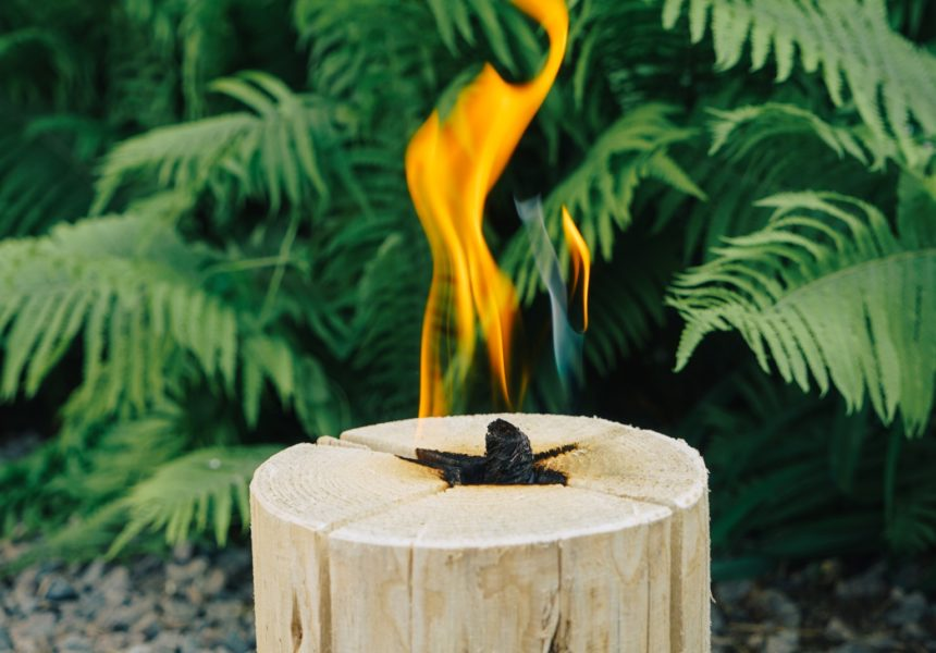 Шведський факел Веселі Бобри